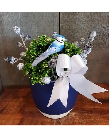 Bluejay & Berries Planter