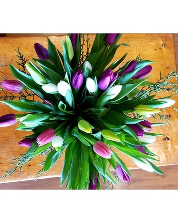 MARKET SPECIAL-- Assorted Hand-tied Tulip Bouquet Bouquet
