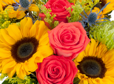 Bonita springs florist flower delivery by heaven scent flowers inc testimonials mightylinksfo