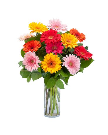 Grand Gerbera Flower Arrangement