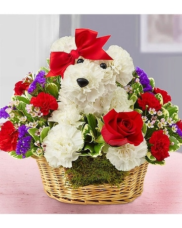 1-800 FLOWERS Love Pup Flower Arrangement