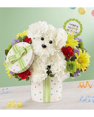 1-800-FLOWERS Party Pooch Flower Arrangement