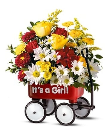 Baby's First Wagon - Girl Flower Arrangement