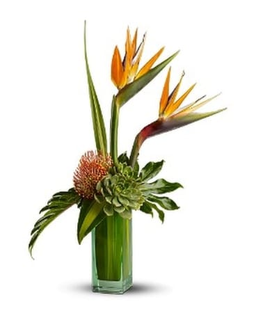 Teleflora's Birds of Beauty Flower Arrangement