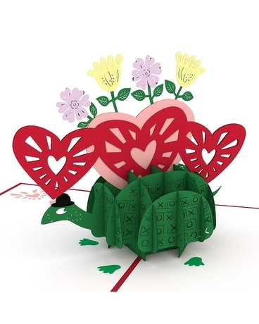 Love Pop Love Turtle Gifts