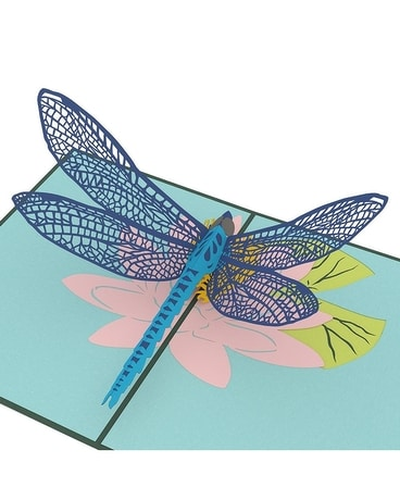 Love Pop Dragonfly Gifts