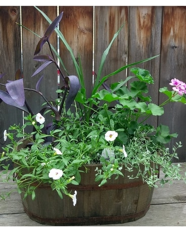 Wooden Patio Planter Plant