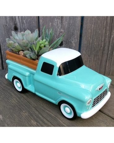 Classic Chevy Truck with Succulents Plant