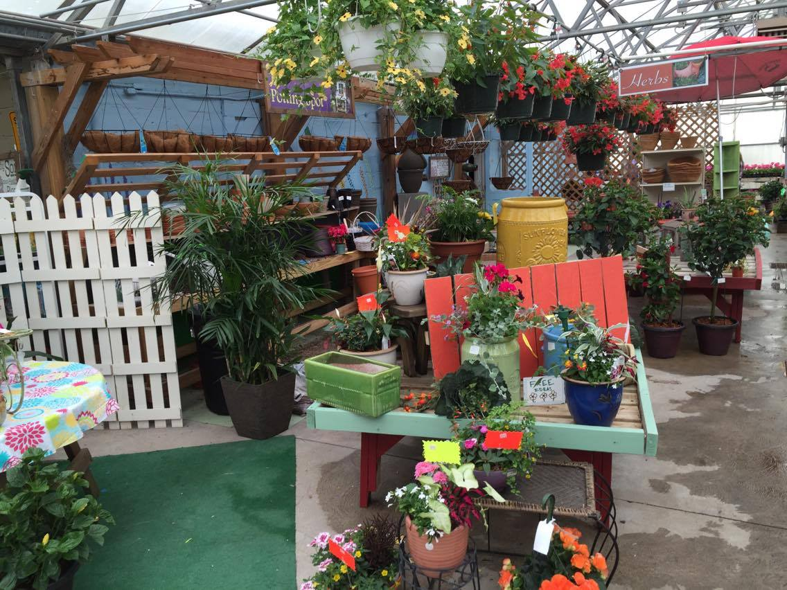 Garden Center   Klotz Floral Design & Garden