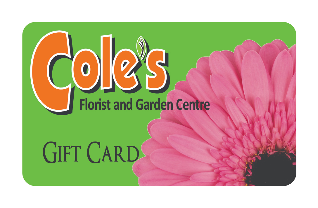 Cole's Gift Card