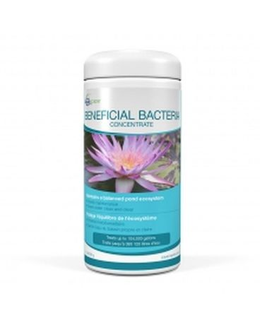 Beneficial Bacteria Concentrate Custom product