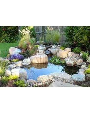 DIY Backyard Pond Kit Custom product
