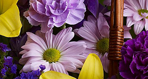 Greenville Florist - Flower Delivery by Expressions Unlimited