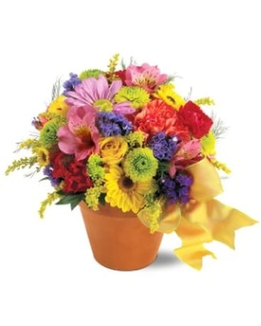 TF's Fresh Blossom Potpourri Flower Arrangement