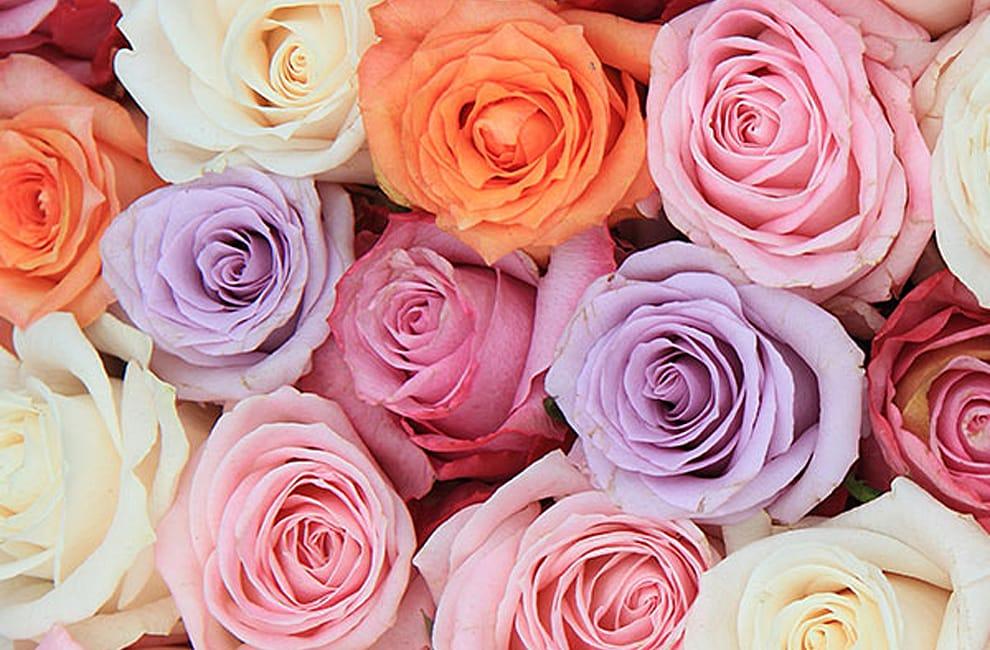 Seattle Florist Flower Delivery By Topper S European Floral Design