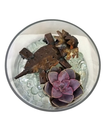 TCU Horned Frog Mini Terrarium Flower Arrangement
