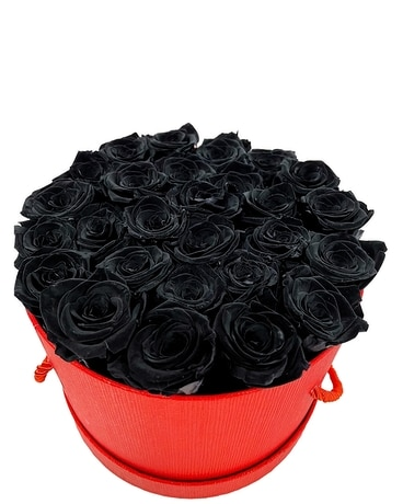 Black Beauty (Preserved Roses)