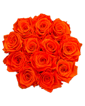 Orange Lush (Preserved Roses) Flower Arrangement