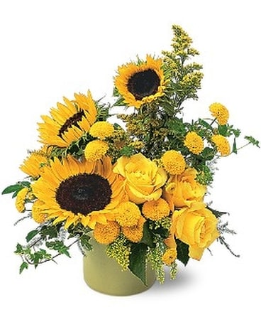 A Pot of Sunflowers Flower Arrangement