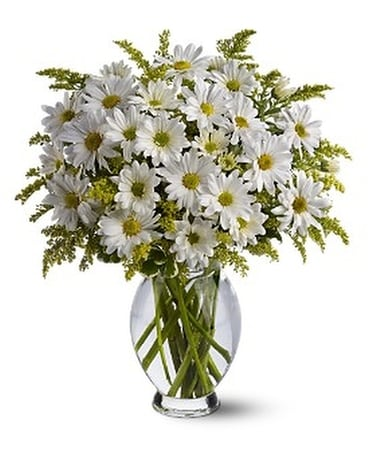 Teleflora's Daisy Days Flower Arrangement