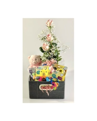 Baby's First Basket Gift Basket