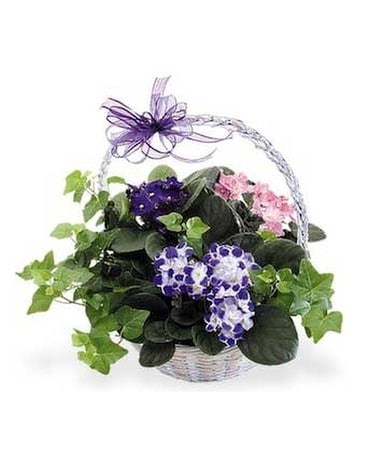 Violet Basket Flower Arrangement