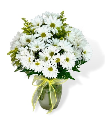 Daisy Day Flower Arrangement