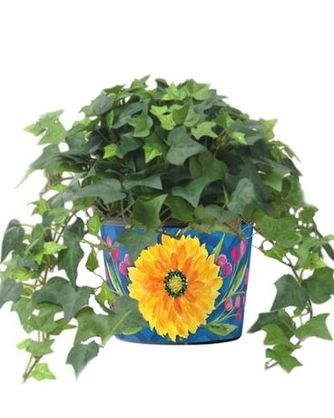 Floral Bright Art Pot Plant