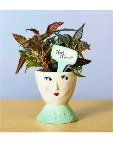 Hot Mess Planter Gifts