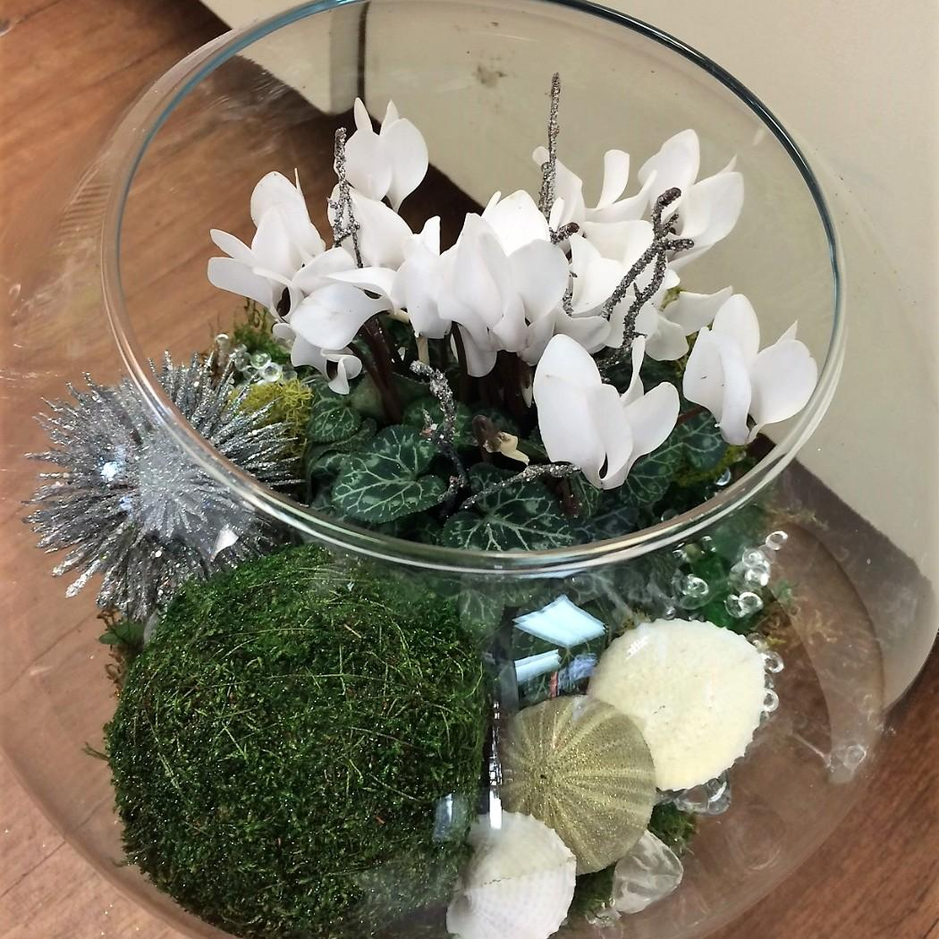 Christmas in a Bowl Specialty Arrangement