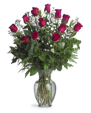 One Dozen Long Stemmed Hot Pink Roses Flower Arrangement