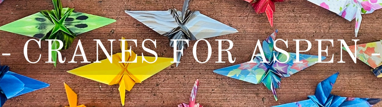 Image for The Flight of a Thousand Paper Cranes for Aspen Agnew