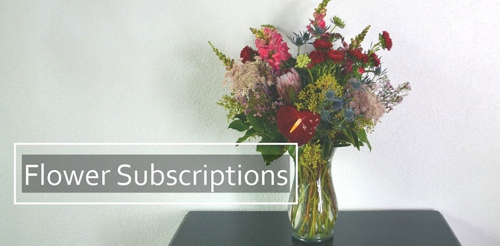 Flower subscriptions by palmer flowers fort collins favorite flower subscriptions from loveland and fort collins permier retail flowers shop palmer flowers mightylinksfo