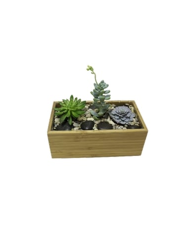 small rock garden succulent planter Flower Arrangement