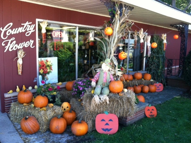 Halloween at Country Flower Shop serving the Milwaukee area