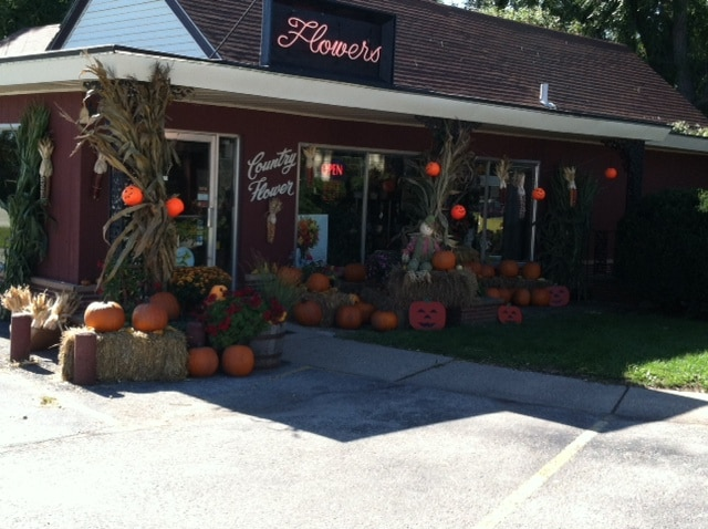 Autumn has arrived at Country Flower Shop