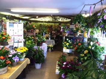 A look inside the Country Flower Shop in Cudahy
