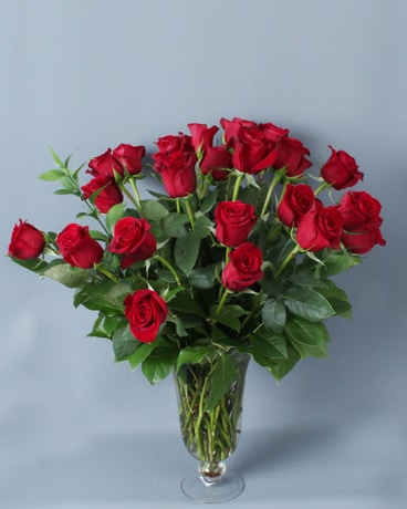 Two Dozen Timeless Red Roses