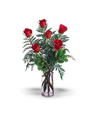 Half Dozen Red Roses Flower Arrangement
