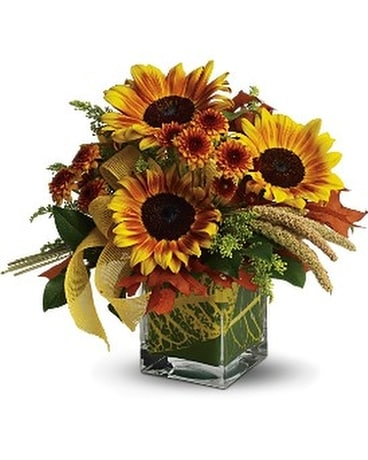 Fall Funflowers Cube Flower Arrangement