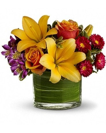 Teleflora's Blossoms of Joy Flower Arrangement