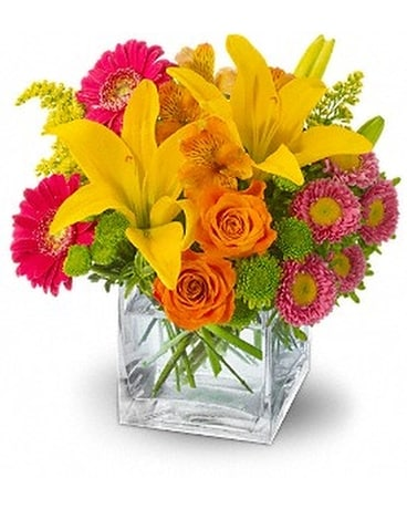 Teleflora's Summertime Splash - by McKean's Flower
