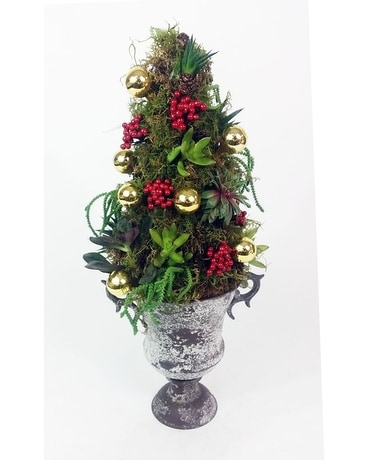 Yuletide Succulent Topiary Plant