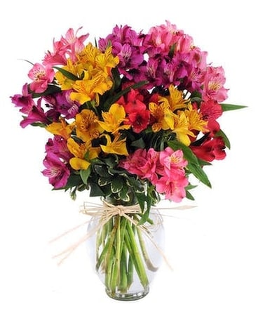 Mystic Alstromeria Flower Arrangement