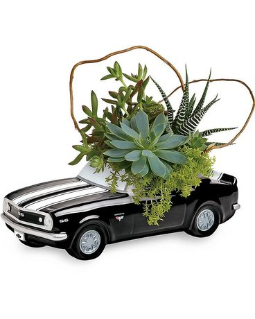 Chevy Camero Succulent Garden Flower Arrangement