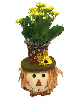 Cheerful Scarecrow