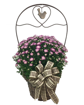 Sweet Country Mum Basket Flower Arrangement