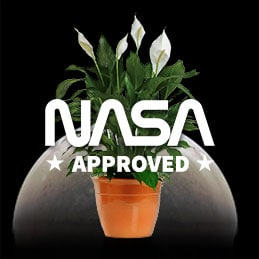 Nasa Approved