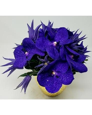 UltraViolet Skies Flower Arrangement ...