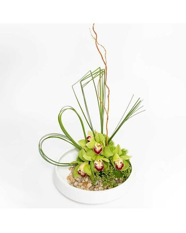 Orchid Oasis Flower Arrangement